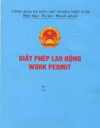 Thu tuc cap giay phep lao dong cho nguoi nuoc ngoai lam viec theo dang hop dong tai Hai Phong
